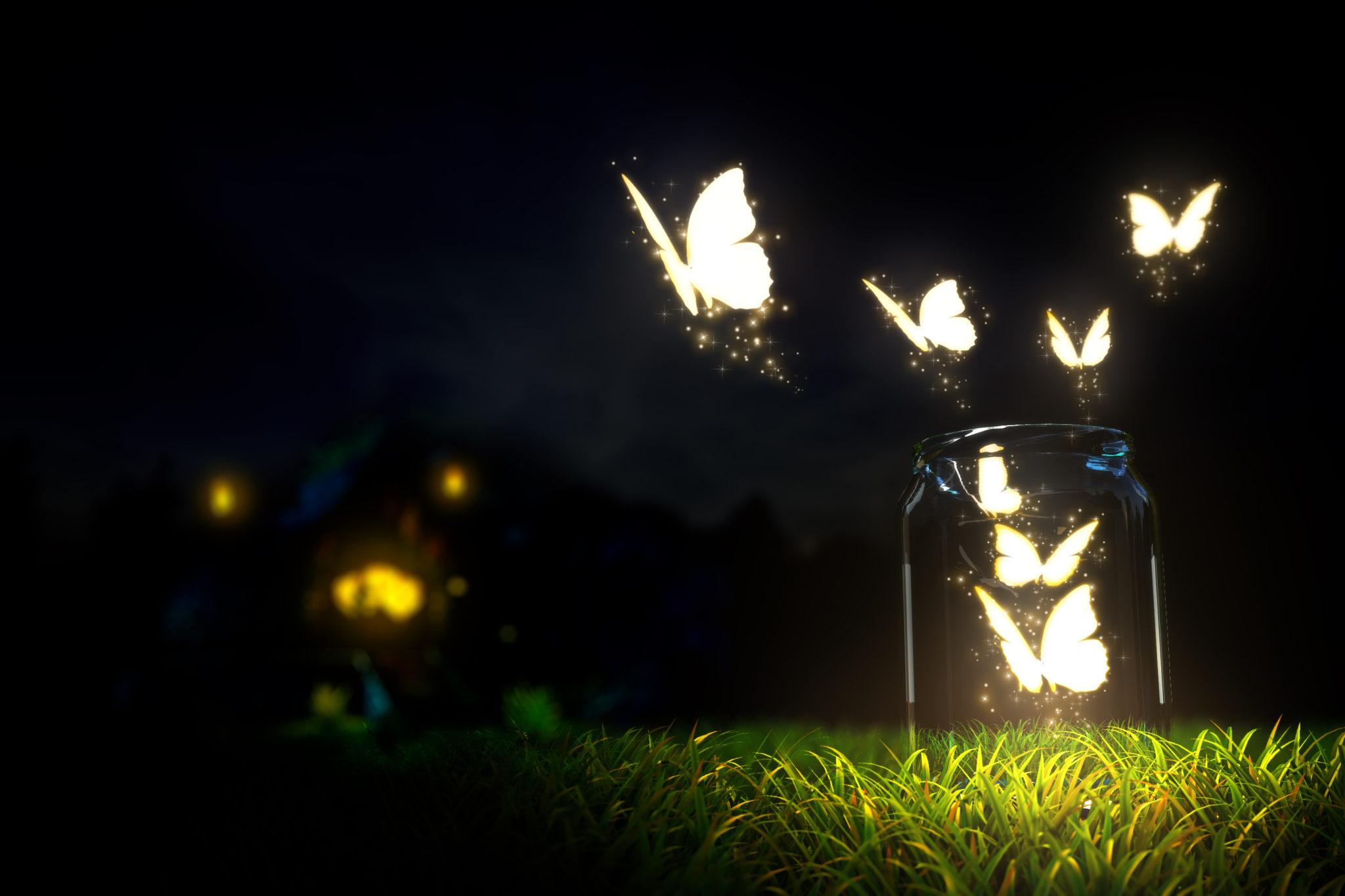 Magical…Night Garden